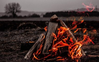 Zimne ognisko