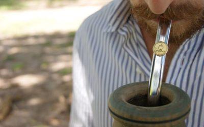 Co pić w terenie – yerba mate
