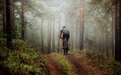 Rowery sportowe: czym się różnią?